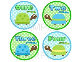 Dylan - Baby Boy Turtles Monthly Photo Stickers