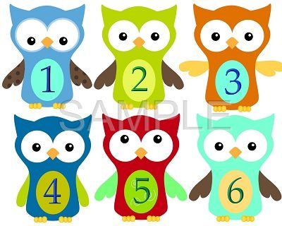 Evan - Adorable Owl Boys in Town Monthly Photo Stickers