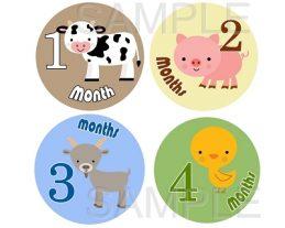 Hayden - Little Farm Friends Monthly Photo Stickers
