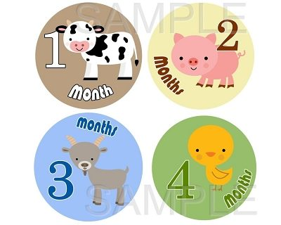 Hayden - Little Farm Friends Monthly Photo Stickers