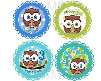 James - Cute Cute Baby Owl Boy Monthly Photo Stickers