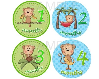 Juan - Cutest Monkey Boy in Town Monthly Photo Stickers