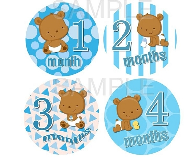 Marc - Cute Teddy Bear Baby Boy Monthly Photo Stickers
