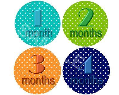 Robert - Happy Polkadots Monthly Photo Stickers