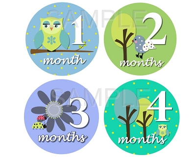 Sylvain - Sweet Owl Birds & Nature Monthly Photo Stickers