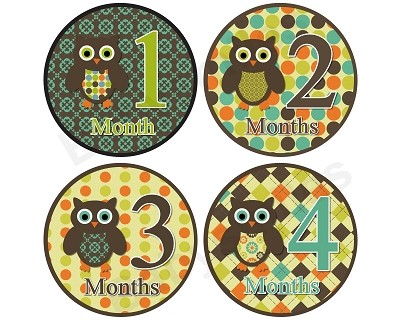 Tanner - Woodland Owls Monthly Photo Stickers