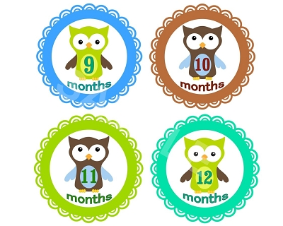 Thomas - Cute Owl Boy Monthly Photo Stickers