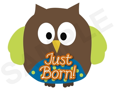 Tyler - Super Cute and Colorful Owl Boys Monthly Photo Stickers