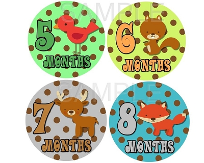 Xavier - Cutest Woodland and Jungle Friends Monthly Photo Stickers