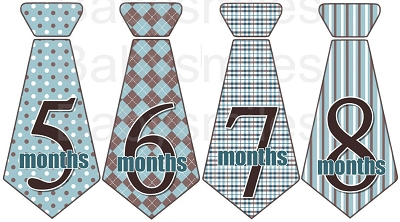 Jason - Beautiful Blue and Brown Pattern Monthly Photo Stickers