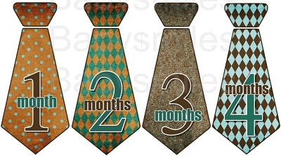 Moxie - Nice Brown and Teal Pattern Monthly Photo Stickers