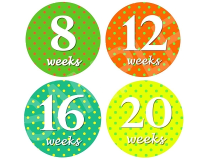 Brooke - Happy Life Monthly Photo Stickers